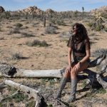 California – Joshua Tree National Park